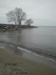 Hamlin Beach (Fall)
